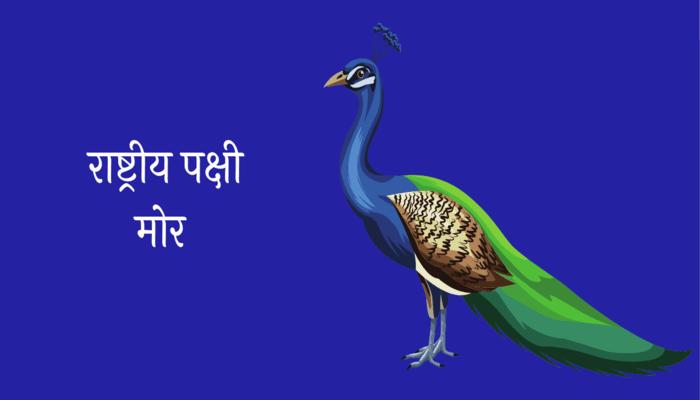 National Bird Peacock Essay in Marathi
